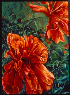 Ragged Poppies - Sold