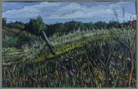 """So Much Magic"" 36X24 Oil on canvas $890"