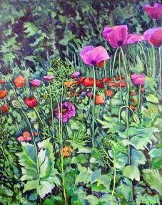 """""""Poppy Jungle"""" Oil over Acrylic on canvas, 24X30"""" $800"""